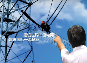电力工程招标行业典范